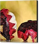 Tropical Mangosteen Canvas Print by Kaye Menner