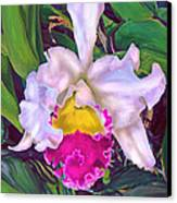 Tropical Orchid Canvas Print by Jane Schnetlage