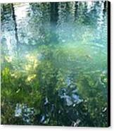 Trout Pond Canvas Print by Mary Wolf