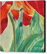 Tulips And Pushkinia Upper Detail Canvas Print by Anna Lisa Yoder