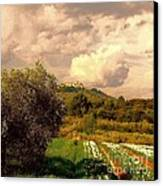 Tulips Field And Lurs Village In Provence France Canvas Print by Flow Fitzgerald
