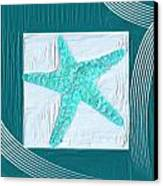 Turquoise Seashells Xvi Canvas Print by Lourry Legarde