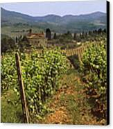 Tuscany Vineyard No.2 Canvas Print by Mel Felix