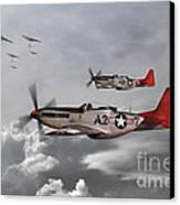 Tuskegee Airmen Canvas Print by J Biggadike