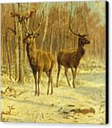 Two Stags In A Clearing In Winter Canvas Print by Rosa Bonheur