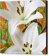 Two White Lilies Canvas Print by Garry Gay