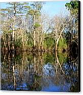 Ultimate Reflection Canvas Print by Debra Forand