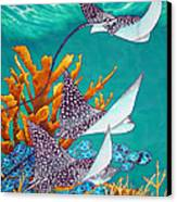 Under The Bahamian Sea Canvas Print by Daniel Jean-Baptiste