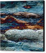 Untamed Sea 2 Canvas Print by Carol Cavalaris