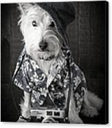 Vacation Dog With Camera And Hawaiian Shirt Canvas Print by Edward Fielding