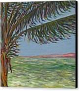 Veiled Horizon Canvas Print by Karen Doyle