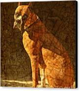 Vermeer's Dog Canvas Print by Judy Wood
