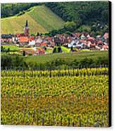 View Of Rodern From The Vineyards Of Alsace Canvas Print by Greg Matchick