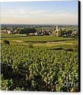 Vineyard And Village Of Pommard. Cote D'or. Route Des Grands Crus. Burgundy.france. Europe Canvas Print by Bernard Jaubert