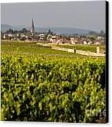 Vineyard In Front Of The Village Of Meursault. Burgundy Wine Road. Cote D'or.burgundy. France. Europ Canvas Print by Bernard Jaubert