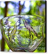 Vinsanchi Glass Art-4 Canvas Print by Vin Kitayama