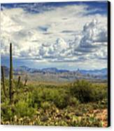 Visions Of Arizona  Canvas Print by Saija  Lehtonen