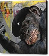 Viva La Evolucion Canvas Print by Joachim G Pinkawa