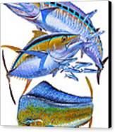 Wahoo Tuna Dolphin Canvas Print by Carey Chen