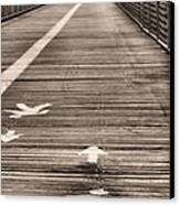 Walk This Way Canvas Print by JC Findley