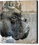 Watchful Canvas Print by Judy Wood
