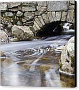 Water Under The Bridge Canvas Print by Andrew Pacheco