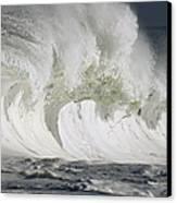 Wave Whitewash Canvas Print by Vince Cavataio