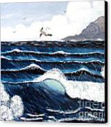 Waves And Tern Canvas Print by Barbara Griffin