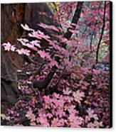 West Fork Fall Colors Canvas Print by Dave Dilli