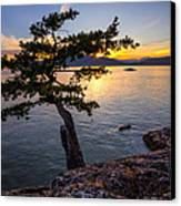 West From Juniper Point Canvas Print by Alexis Birkill