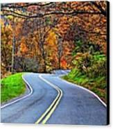 West Virginia Curves 2 Canvas Print by Steve Harrington