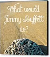 What Would Jimmy Buffett Do Canvas Print by Edward Fielding
