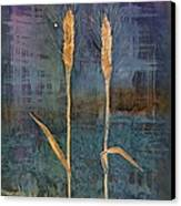 Wheat Couple Canvas Print by Carolyn Doe