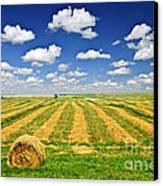 Wheat Farm Field And Hay Bales At Harvest In Saskatchewan Canvas Print by Elena Elisseeva