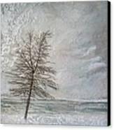 When Grey Matters Canvas Print by Victoria Primicias