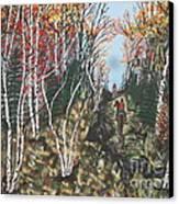 White Birch Trail Ride Canvas Print by Jeffrey Koss