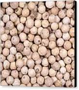 White Peppercorn Background Canvas Print by Jane Rix