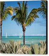White Sails. Mauritius Canvas Print by Jenny Rainbow