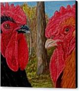 Who You Calling Chicken Canvas Print by Karen Ilari