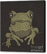 Who You Lookin' At ? Canvas Print by Suzette Broad