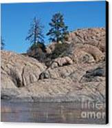 Willow Lake Number One Color Canvas Print by Heather Kirk
