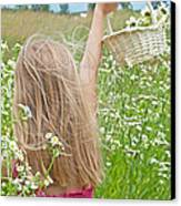 Wild Daisy Field Canvas Print by Maria Dryfhout