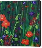 Wild Poppies Canvas Print by Anastasiya Malakhova