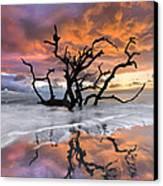 Wildfire Canvas Print by Debra and Dave Vanderlaan