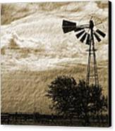 Wind Blown Canvas Print by Tony Grider