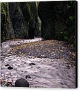 Winding Through Oneonta  Gorge Canvas Print by Jeff Swan