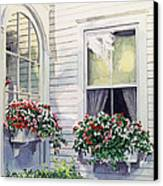 Window Boxes Canvas Print by David Lloyd Glover