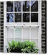 Window In London Canvas Print by Elena Elisseeva