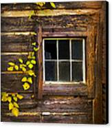 Window To The Soul Canvas Print by Debra and Dave Vanderlaan