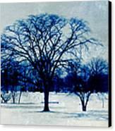 Winter Blues Canvas Print by Shawna Rowe